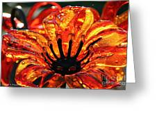 Sultry Petals Greeting Card