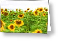 Sultry Sunflowers Greeting Card