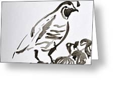 Sumi-e Quail Greeting Card by Beverley Harper Tinsley
