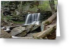 Summer At B Reynolds Falls Greeting Card