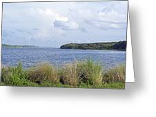 Summer At Guana Lake Greeting Card