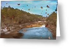 Summer At The River Greeting Card