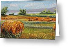 Summer Bales Greeting Card