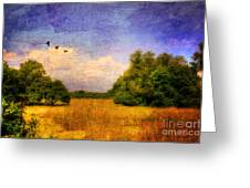 Summer Country Landscape Greeting Card