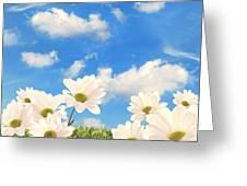 Summer Daisies Greeting Card by Amanda Elwell