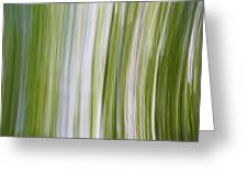 Summer Day Abstract Greeting Card