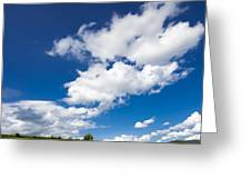 Summer Day Blue Sky Green Grass Greeting Card
