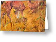 Summer Deer Greeting Card