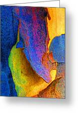 Summer Eucalypt Abstract 11 Greeting Card