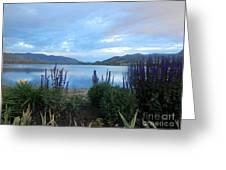 Summer Evening At Lake Osoyoos Greeting Card