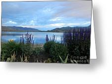 Summer Evening At Lake Osoyoos Greeting Card by Margaret McDermott