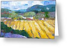 Summer Field 2 Greeting Card by Becky Kim