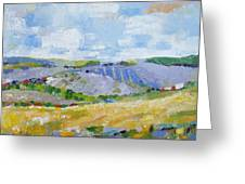 Summer Field 3 Greeting Card by Becky Kim