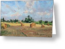 Summer Fields In Georgetown On Greeting Card