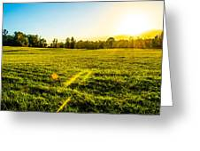 Summer Fields Greeting Card by Parker Cunningham