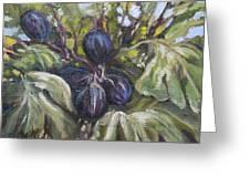 Summer Figs II Greeting Card
