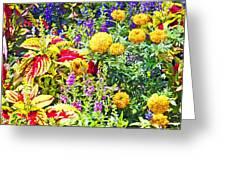 Summer Flower Garden Poster Print Greeting Card