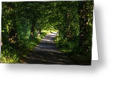 Summer Forest Road Greeting Card