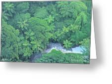 Summer Green Greeting Card
