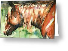 Horse Painting In Watercolor Summer Horse Greeting Card