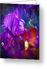 Summer Hummers Greeting Card