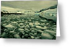 Summer Ice Greeting Card