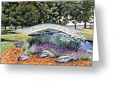 Summer In Doty Park Greeting Card