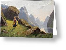Summer In The Fjord Greeting Card