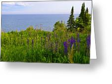 Summer Lake View Greeting Card by Michelle Ressler