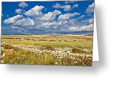 Summer Landscape Of Pag Island Greeting Card