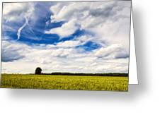 Summer Landscape With Cornfield Blue Sky And Clouds On A Warm Summer Day Greeting Card