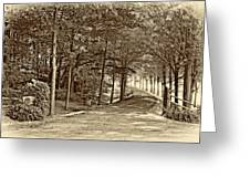Summer Lane Sepia Greeting Card