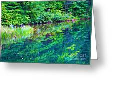 Summer Monet Reflections Greeting Card