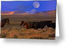 Summer Moon  Greeting Card