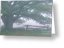 Summer Morning Fog Greeting Card