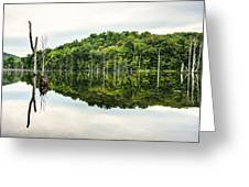 Summer Morning On Monksville Reservoir 2 Greeting Card by Gary Heller