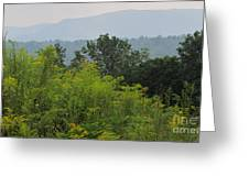 Summer Mountain Vista Greeting Card