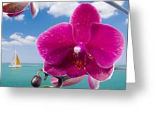 Summer Paradise Greeting Card