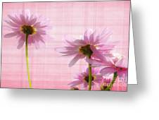 Summer Pinks Greeting Card