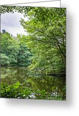 Summer Pool Cannock Chase Greeting Card