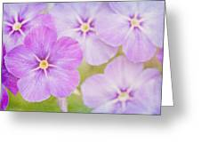 Summer Romance  Greeting Card