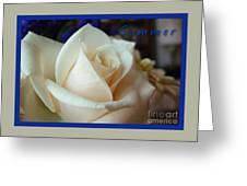 Summer Rose Sapphire Border Greeting Card