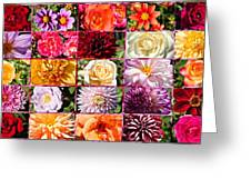 Summer Roses And Dahlias 2013 Greeting Card