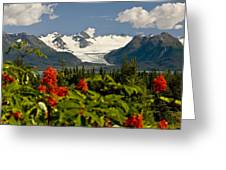Summer Scenic Of Grewingk Glacier And Greeting Card