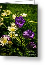 Summer Scents Greeting Card
