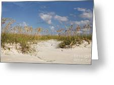 Summer Sea Oats Greeting Card