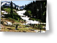 Summer Snow Greeting Card