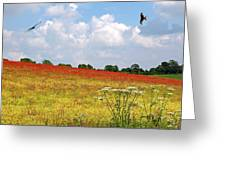 Summer Spectacular - Red Kites Over Poppy Fields Greeting Card