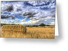 Summer Straw Bales Greeting Card
