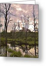 Summer Swamp  Greeting Card